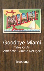 Goodbye Miami cover